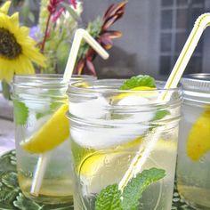 Beekeeper's Balm Cocktail Recipe Beverages, Cocktails with honey, hot water, white rum, lemon juice, lemon balm