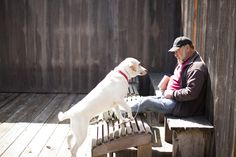 Sea Ranch Lodge Dog Friendly Hotels In Mendocino Guests