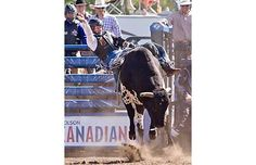 Tyler Thomson competes in the bull riding event at the Big Valley Jamboree.