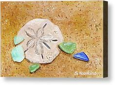 Sea-glass Canvas Prints - Sand Dollar and Beach Glass Canvas Print by Sheryl Heatherly Hawkins
