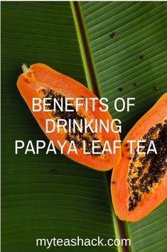 The benefits of Papaya Leaf Tea are well known because, thanks to its high content of antioxidants, vitamins, minerals, and digestive enzymes Papaya Leaf Tea, Guava Leaf Tea, Guava Leaves, Best Tea Brands, Tea Benefits, Health Benefits, Iced Tea Recipes, Antioxidant Vitamins, Brewing Tea