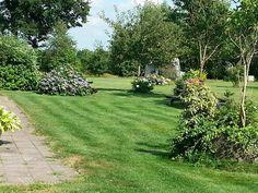 """Minicamping """"Loeksham"""" , mooi en rustig kamperen in Drenthe, nabij Emmen. Ruime Plaatsen en zeer mooi sanitair."""