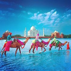 """#Mystical #beautifull #India ♡ """"Those who dwell among the beauties and mysteries of the magical life on earth are never alone or weary of life.""""  ♡"""