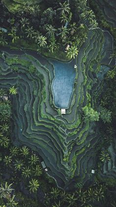 Tegallalang, Bali, Indonesia