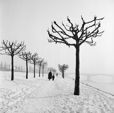 Bill Perlmutter: Along the Banks of the Main, Germany, 1955