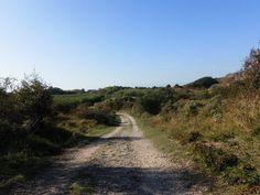 Duinen omgeving Santpoort/Bloemendaal