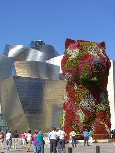 Guggenheim Museum in Bilbao, Spain - I loved the dog made of flowering plants.