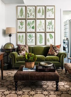 Lllllooooovvvvvveeeee it all! Green velvet sofa with rolled arms and nailhead trim, ottoman in brown, the botanicals, globe, lamp, EVERYTHING!!!