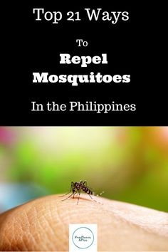 """How to Repel Mosquitoes in the Philippines. Even in the cities, and most certainly in the provinces, mosquitoes can literally be a """"killer. Mosquitoes, Keeping Healthy, The Province, Tandem, Philippines, Top, Life, Tandem Bikes, Crop Shirt"""