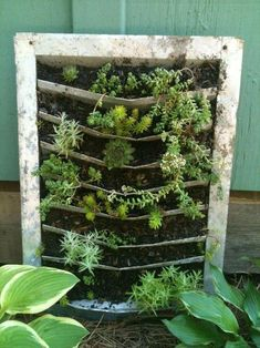 """Cindy Barton tells us, """"This was an aluminum house vent that we didn't use in our potting shed. I saw the potential of a vertical garden between those slots."""