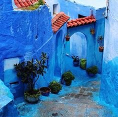 Charming walks around a blue town. Great vibe in #Chefchaoene, #Marocco