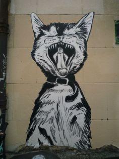 Suriani, Chat rue Amelot-11e