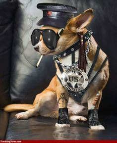 Dog the Bounty Hunter on Pinterest | Leland Chapman, Duane Lee Chapman ...