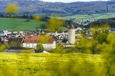 Ausflugsziele Schweiz: 99 Ideen für einen tollen Tagesausflug