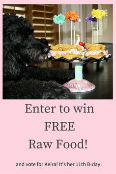 Balanced Blends is having a great contest. Vote for Keira and the raw food B-day cake and enter to win FREE food for your dog or cat.Thank you! Enter here: http://www.balancedblends.com/pages/making-raw-feeding-fun-gallery-sweepstakes?d=3opdt