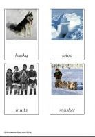 Free montessori printables of the Animals of the Arctic - designed to match safari's Arctic toob