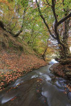 Fall in  Spain