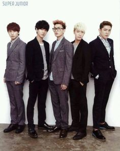 Sungmin Yesung Eunhyuk Donghae Kangin <3 Each one so perfect, it's unbelievable!~
