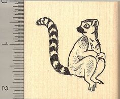 Lemur Rubber Stamp * Read more reviews of the product by visiting the link on the image.