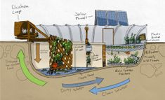 3 Creative Solutions Emerging in Urban Farming Garden Pool combines solar power, water conservation, poultry farming, aquaculture and more to convert water-intensive swimming pools into food oases. Aquaponics System, Aquaponics Diy, Aquaponics Greenhouse, Hydroponic Gardening, Organic Gardening, Garden Pool, Backyard Ponds, Backyard Chickens, Tropical Garden