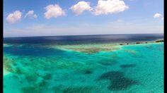 Perfect spot for snorkeling in Aruba...