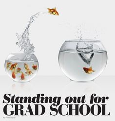 Standing out for grad school. Read more: http://issuu.com/jobpostingsca/docs/jp_may2012_cover/27 | #postgrad