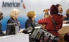 A team of professionally trained comfort dogs at Dulles International Airport are helping ease travelers' stresses this holiday season.