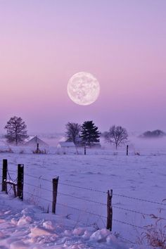 Pastel Ombre sky in the winter silence rural