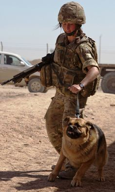 Military Dog Picture of the Week. (April 11th, 2012) The Brilliant Brits!