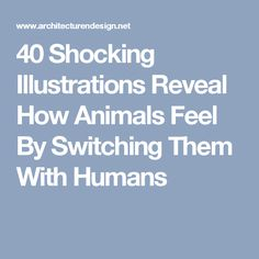 40 Shocking Illustrations Reveal How Animals Feel By Switching Them With Humans