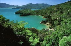 Explore the South Island before crossing the Cook Strait in our Explore New Zealand 8 day driving itinerary from Queenstown to Wellington Marlborough Sounds, All I Ever Wanted, South Island, New Zealand, Places Ive Been, To Go, River, Explore, Vacation