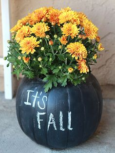 Chalkboard Pumpkin Planters! What a cute idea! http://www.bhg.com/halloween/outdoor-decorations/pretty-front-entry-decorating-ideas-for-fall/?socsrc=bhgpin092114chalkboardpumpkinplanters&page=3