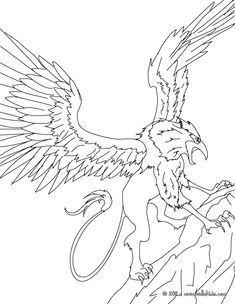 Coloring Griffin The Majestic And Powerful Creature Pages With My Little Pony Printable Colouring