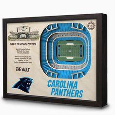 Carolina Panthers Bank of America Stadium 3D View Wall Art