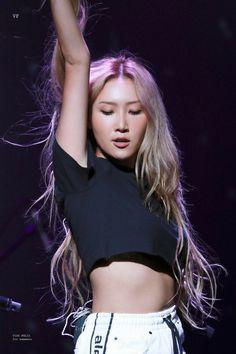Check out Mamamoo @ Iomoio Kpop Girl Groups, Korean Girl Groups, Kpop Girls, K Pop, Rapper, Solar Mamamoo, Wheein Mamamoo, Babe, Bias Kpop