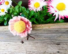 No sewing no glue forgotten profession autor galerytouchofrainbow Gifts For Girls, Girl Gifts, Flower Brooch, Hair Clips, Beautiful Flowers, Flora, Daisy, Recycling, Felt