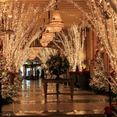 Roosevelt Hotel New Orleans Christmas | The Roosevelt New Orleans, a Waldorf Astoria Hotel, New Orleans,...