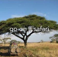safari. #bucketlist