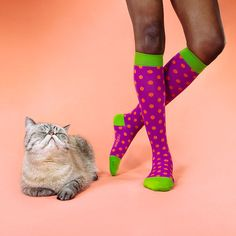 10% off with the coupon: FBSOX Nabee Compression Socks are great for preventing fatigue and pesky varicose veins during a long nursing shift.    Plus, they come in awesome, colors!  (Captain Pancakes the cat not included)
