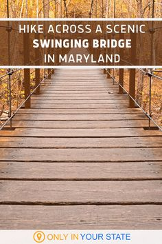 Hike across a swinging bridge in Maryland and enjoy the beautiful fall foliage. An easy trail all year, it's even prettier will autumn colors! A great family day trip or couples adventure, add this destination to your fall travel bucket list. Be sure to bring your camera for the photo ops! Vacation Trips, Vacation Spots, Day Trips, Patapsco Valley State Park, Adventure Couple, Local Attractions, Family Day, Rv Travel, Maryland
