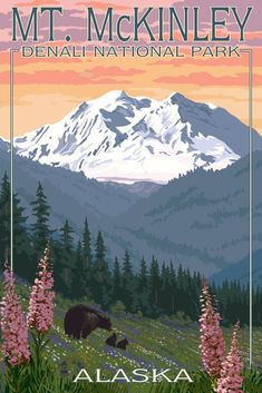 Denali National Park, Alaska - Mount McKinley - Bear and Cubs with Flowers (36x54 Giclee Gallery Print, Wall Decor Travel Poster) ** Hurry! Check out this great product : Dining Entertaining