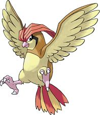 Pokemon of the Day: 017 - Pidgeotto