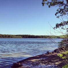 Thompson's Lake Campground at Thacher State Park, is a popular campground and recreation area. The park is situated along the Helderberg Escarpment and provides a marvelous panaroma of the Hudson-Mohawk Valley and the Adirondack and Green Mountains.