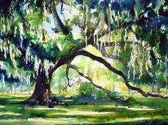 Live Oak Tree watercolor painting by Jennifer Branch