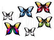mariposas colores.marca agua