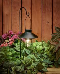 Use this Marine-Style Solar Lantern Stake to light up a walkway or any outdoor area. It features a string of 4 warm white LED lights inside. x including the ground stake Unique Garden Decor, Unique Gardens, Garden Ideas, Marine Style, Solar Hanging Lanterns, Solar Deck Lights, Solar Lights For Garden, Solar Lantern Lights, Fairy Lights