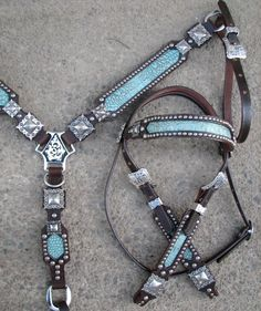I want this!!!  Turquoise Gator Tack Set with Antique Silver by Running Roan Tack