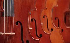 Tarieven cursussen | Muziekschool All Music