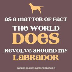 As a matter of fact, the world does revolve around my Labrador