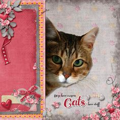 Cats have staff, created with Kitty Love by Kristmess Designs